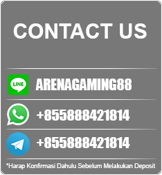 NEW CONTACT ARENAGAMING88